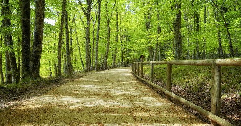 Sentiero di montagna, Itinerari Parco Nazionale del Gargano