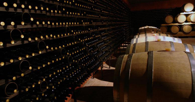 Cantina vino pugliese