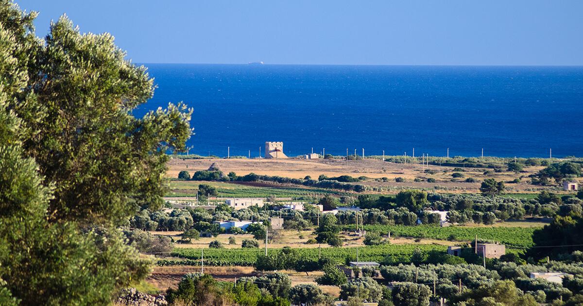 Panoramica territorio di Manduria