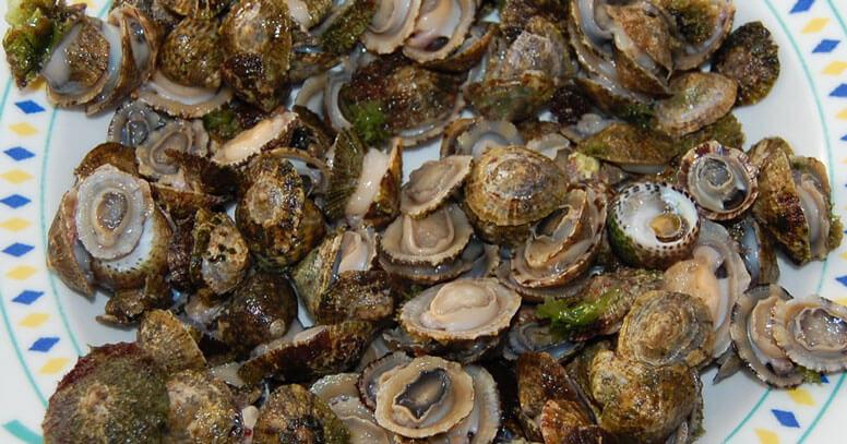 Mercato ittico Mola di Bari