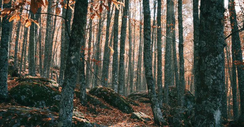 cosa vedere in puglia in autunno